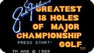 Игра Чемпионат по гольфу: 8 лунок / Championship Go8 Holes (NES)