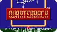 Игра Квотербек Джон Элвей / John Elway's Quarterback (NES)