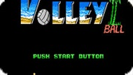 Игра Волейбол на пляже Венеции / Venice Beach Volleyball (NES)