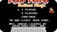 Игра Ребенок Ники: Радикальный Ниндзя / Kid Niki: Radical Ninja (NES)