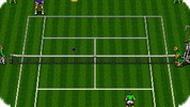 Игра Чемпионат по теннису / ATP Tour Championship Tennis (SEGA)