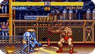 Игра Уличный боец 2: специальная чемпионская версия / Street Fighter 2: Special Champion Edition (SEGA)