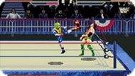 Игра Реслингмания: аркадная версия / WWF Wrestlemania Arcade (SEGA)