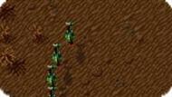 Игра Огневая мощь 2000 / Firepower 2000 (SNES)