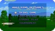 Игра Айрэм Скинс  / Irem Skins Game (SNES)