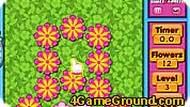 Быстрые цветы