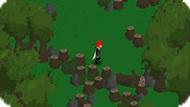 Приключения в лесу
