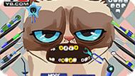 Игра Сердитый кот