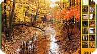 Игра Осенний лес
