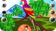 Игра Красивый попугай