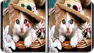 Игра Милые котята