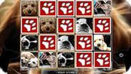 Игра Милые щенки