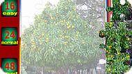 Игра Апельсиновое дерево