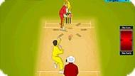 Игра Крикет 2015