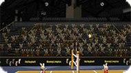 Олимпийский турнир