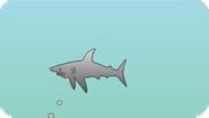 Игра Акулы 7