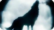 Игра Клан волков