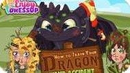 Игра Как Приручить Падающего Дракона