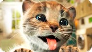 Игра Приключения Маленького Котенка 2