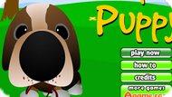 Игра Найти Собаку