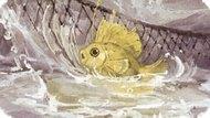 Игра Золотая Рыбка: