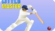 Игра Маленький Мастер Крикета / Little Master