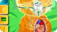 Игра Операция На Сердце Говорящего Рыжика