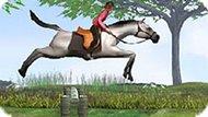 Игра Прыжки На Лошади 3Д