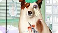 Игра Собака Точка Ком: Лечить Стэна