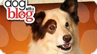 Игра Собака Точка Ком: Стэн Пишет Блог