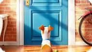 Игра Тайная Жизнь Домашних Животных: Собрать Цифры
