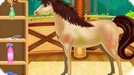 Игра Уход И Спа Для Лошади