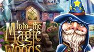 Игра В Волшебные Леса / Into The Magic Woods