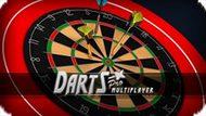 Игра Профессиональный Дартс Мультиплейер / Darts Pro Multiplayer