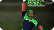 Игра Крикет: Вызов Филдера / Cricket Fielder Challenge