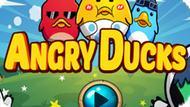 Игра Злые Птицы: Сердитые Утки / Angry Ducks