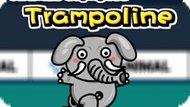 Игра Олимпийские Игры Для Животных: Трамплин / Animal Olympics Trampoline