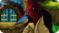Игра Приключения Птицы / Quailludes
