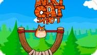 Игра Выстрел Сердитой Кошки / Angry Cat Shot