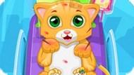 Игра Маленький Доктор Кошки / Little Cat Doctor