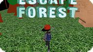 Игра Побег Из Леса / Escape Forest
