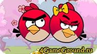 The new game about Angry Birds