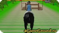 Скачем на лошади во весь опор