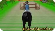 We skip a horse at full gallop