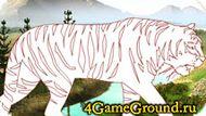 Раскраска про Тигра
