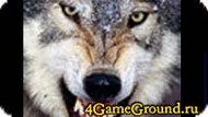 Collect the puzzle with the wolf Game